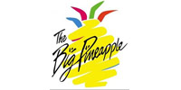 Sunshine Coast accommodation - The Big Pineapple