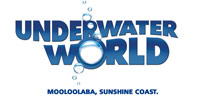 Sunshine Coast accommodation - Underwater World